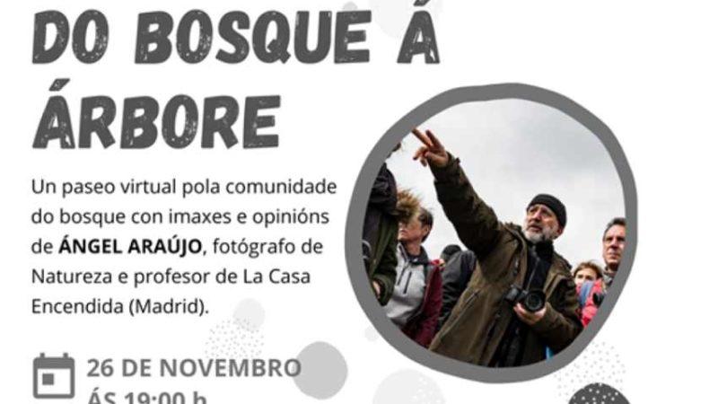 """""""SonÁrbore"""". Ateneo de Ourense"""