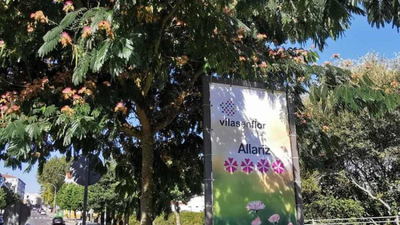 Allariz consegue de novo as 4 Flores de honra (Ourense)