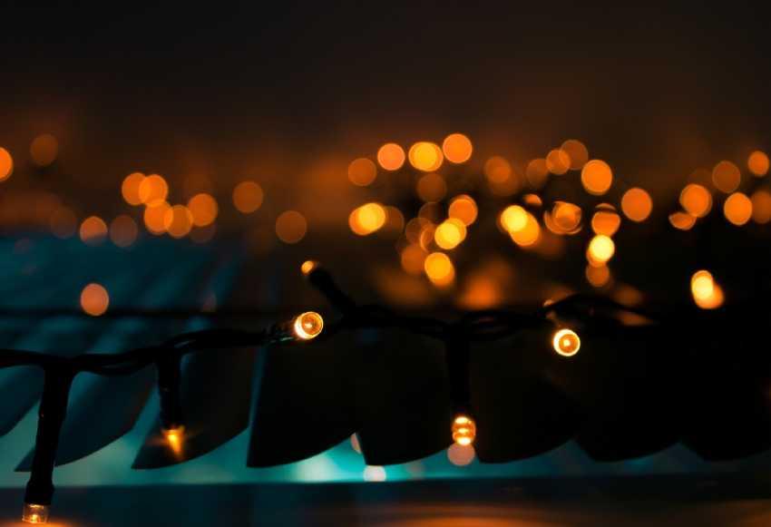 Volve o Nadal á Alameda coa iluminación da Araucaria de case 30 metros. Pontevedra