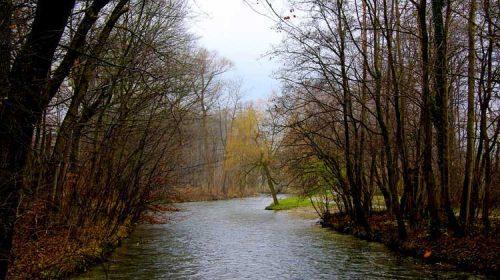 O Río Avia