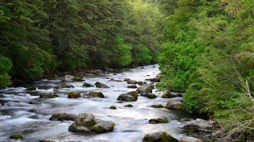 O Río Deva