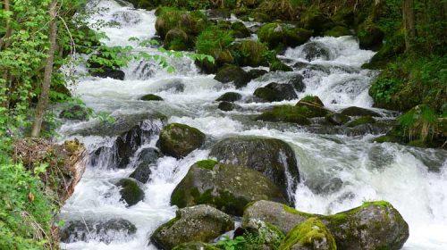 El Río Támega
