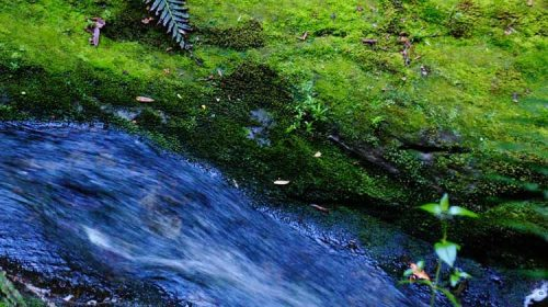 O Río Gafos