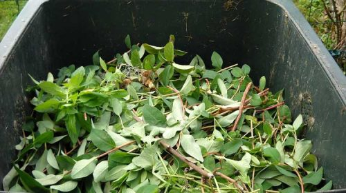 Qué facer para inscribirse no proxecto de compostaxe de Barbadás