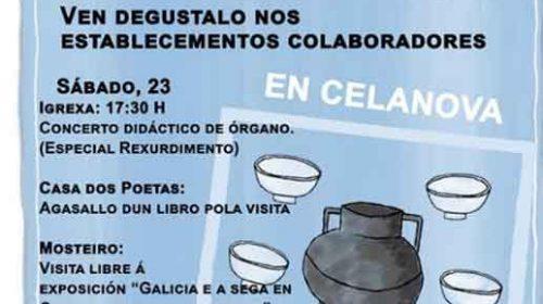 Día de Rosalía. Celanova