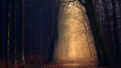 O Bosque de  Libradón. Primeiros Tempos. (Traslado de Santiago Apóstolo)