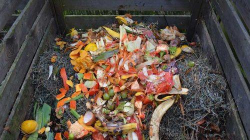 El Ayuntamiento inicia en Tomeza la implantación del compostaje individual en el rural pontevedrés