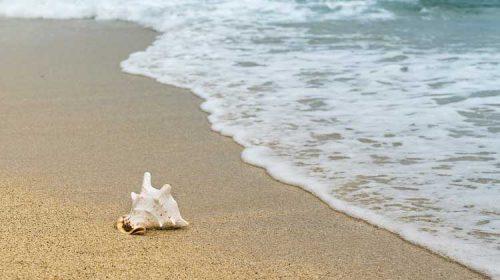 Bandeiras azuis nas praias de Sanxenxo